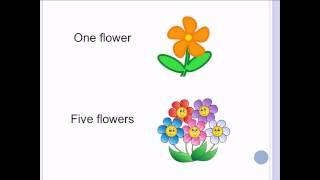 Урок 1. Злічувальні та незлічувальні іменники в англійській мові