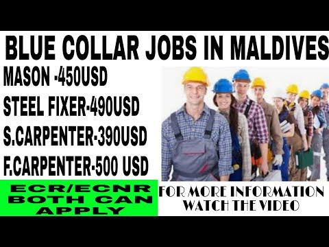 Job In Maldives | Blue Collar Job In Maldives | Mason | Salary In US Dollar | Steel Fixer | Plumber