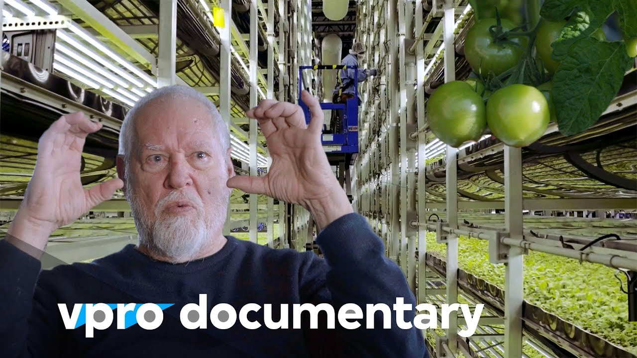 Download The rise of vertical farming | VPRO documentary (2017)