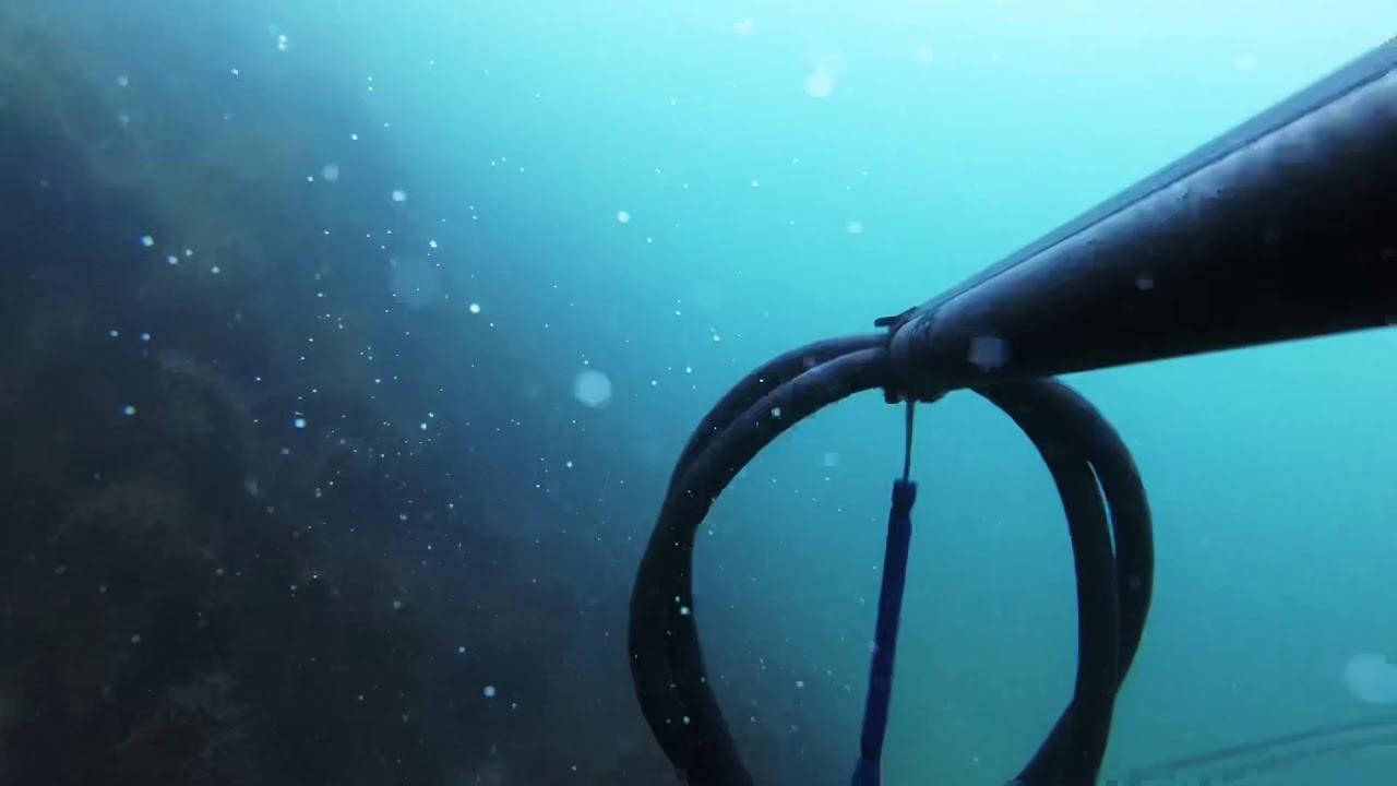 13b83498 Frivannsliv - spesialist på fridykking og undervannsjakt