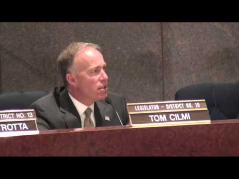 Red Light Camera Hearing at Suffolk County, NY Legislature Part 1 of 2 SD