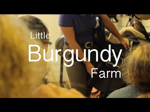 Little Burgundy Farm Summer Camp
