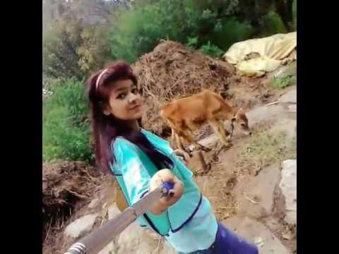Alisha khan in manali's cow video