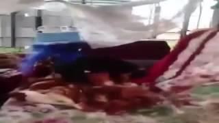 Смеялся до слез!!!собака мастер секса
