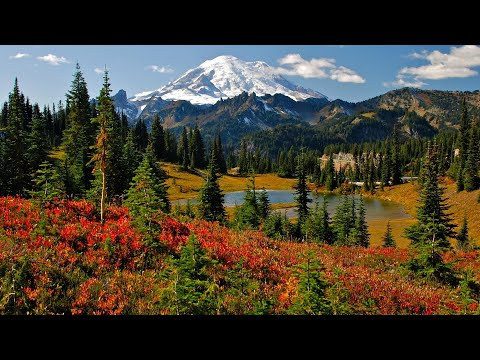 Mt. Rainier National Park, Seattle