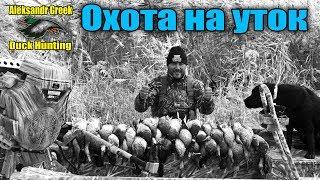 Охота на утку с подсадными утками и духовыми манками!!