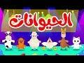 أنشودة الحيوانات |  أناشيد وأغاني أطفال باللغة العربية