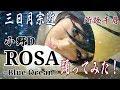 【刀剣コス】三日月宗近で小野D『ROSA 〜Blue Ocean〜』踊ってみた♪