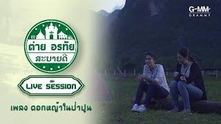 ต่าย-อรทัย-สะบายดี-live-session-ดอกหญ้าในป่าปูน
