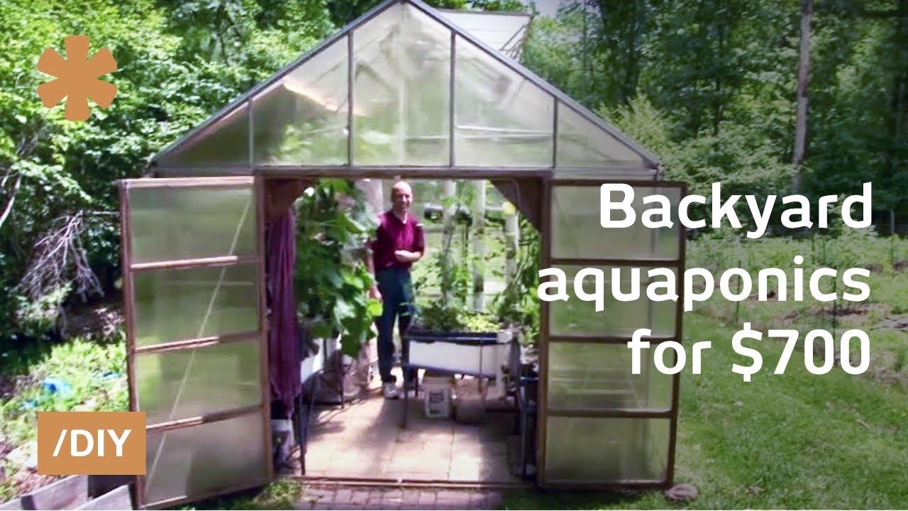 Backyard aquaponics: DIY system to farm fish with ...