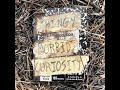 thingy - morbid curiosity (full album)