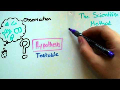 Hypothesis vs Theory vs Law - Science Skills 1B - PS: Physics at West