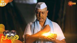 Nandini - Episode 827 | 23rd Dec 19 | Udaya TV Serial | Kannada Serial