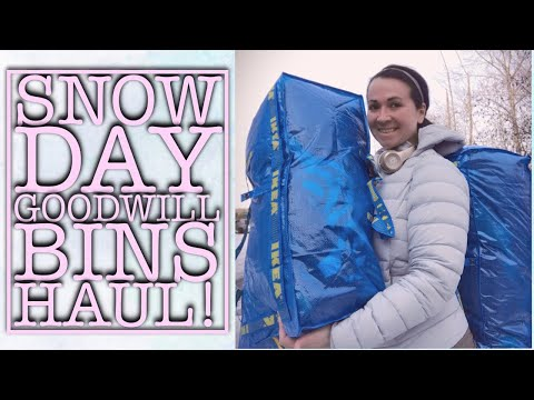 JOHNNY WAS, PATAGONIA, FREE PEOPLE, EILEEN FISHER, ANTHRO & MORE! GOODWILL BINS HAUL ON A SNOWY DAY!