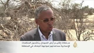 إقليم أرض الصومال يناشد منظمات الإغاثة لمواجهة الجفاف