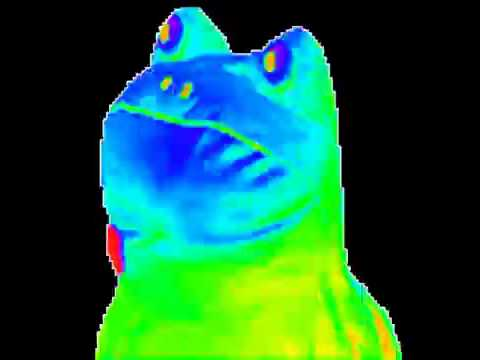 Mlg Hd Wallpaper The Dancing Rainbow Frog Youtube