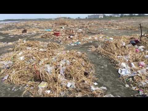 8月的海邊,有如垃圾掩埋場!