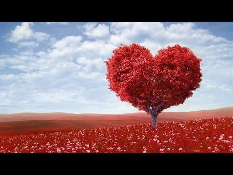 puisi cinta tentang al-qur'an