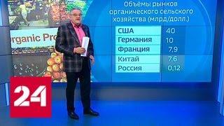 В России появится бренд экологически чистых продуктов - Россия 24