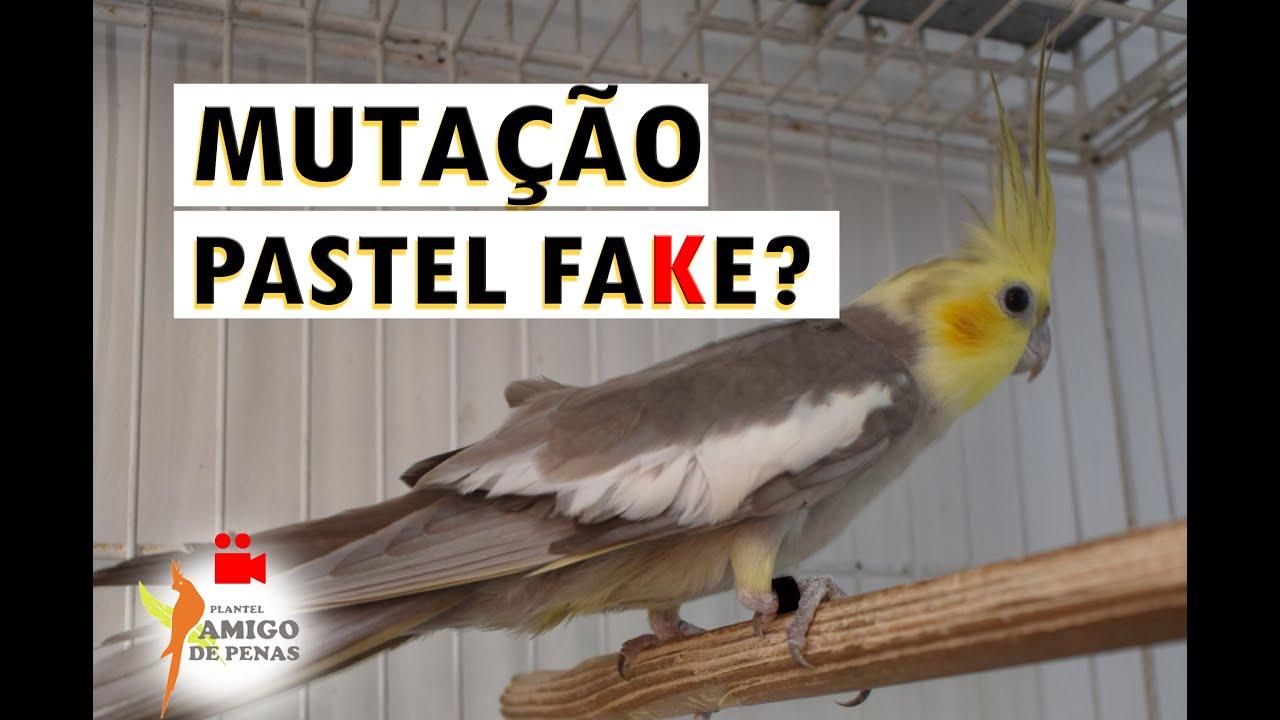 O que é a mutação Pastel FaKe?