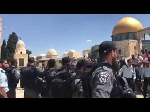 Arrest of Arab guard on Har Habayis (Media Resource Group)