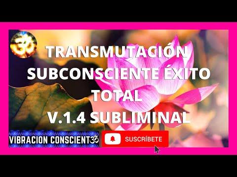 transmutaciÓn-subconsciente-Éxito-total-v.1.4-subliminal-|-4k-|