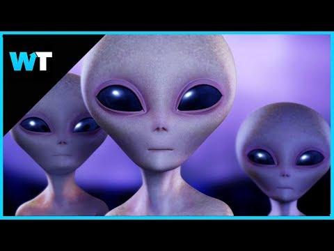 Alien Hunters Plan to STORM Area 51??