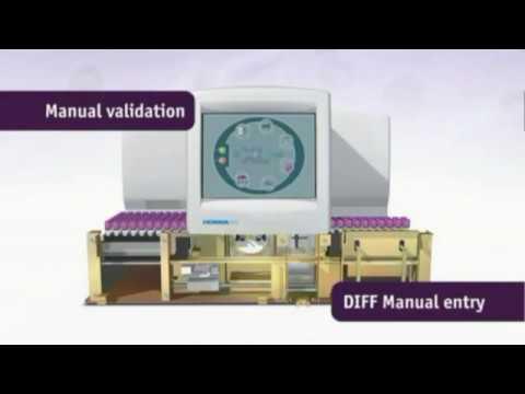 Automated 5 part differential hematology analyzer ABX Pentra XL80 principleиз YouTube · Длительность: 8 мин5 с