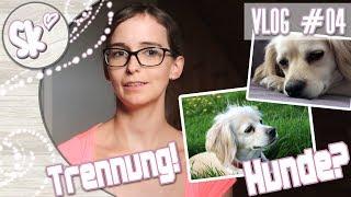 Trennung von Fabi 💔 & Was ist mit den Hundis? 🐕 | Vlog #04