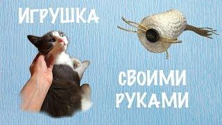 Твой котик заскучал? Посмотри как сделать игрушку-когтеточку для кота своими руками!