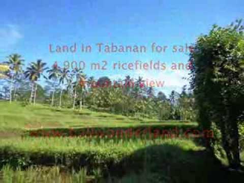 Land for sale in Bali, Fantastic view in Tabanan Bali -- TJTB111