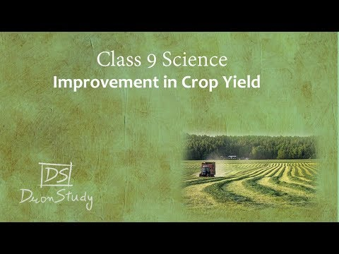 Improvement In Crop Yield | Improvement In Food Resources | CBSE Class 9th IX Science