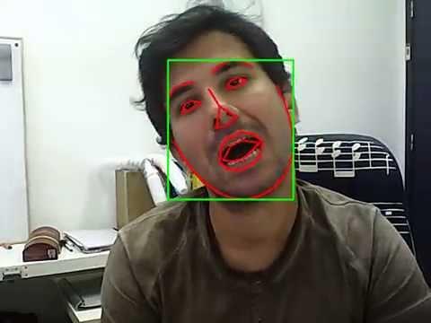 eyenov's facial landmark detection & tracking