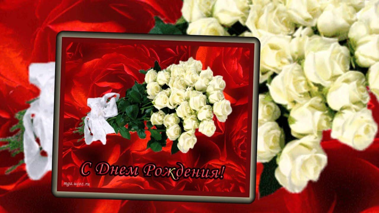 Розы алые розы красные розы белые скачать песню