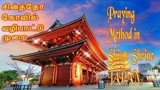 神社   How to Pray in Shinto Shrine ஜப்பான் சின்த்தோ கோவில் வழிபாட்டு முறை Tamil Vlog Japan தமிழ்