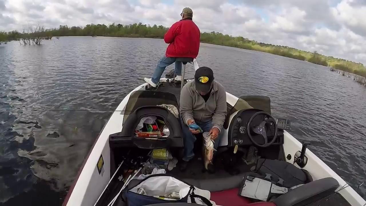 Sam rayburn bass fishing youtube for Fishing sam rayburn
