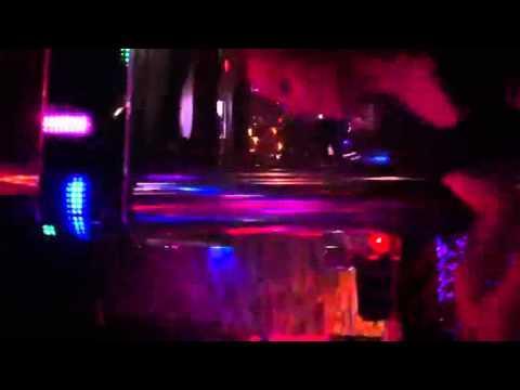 Disco marco femka bulldog karaoke