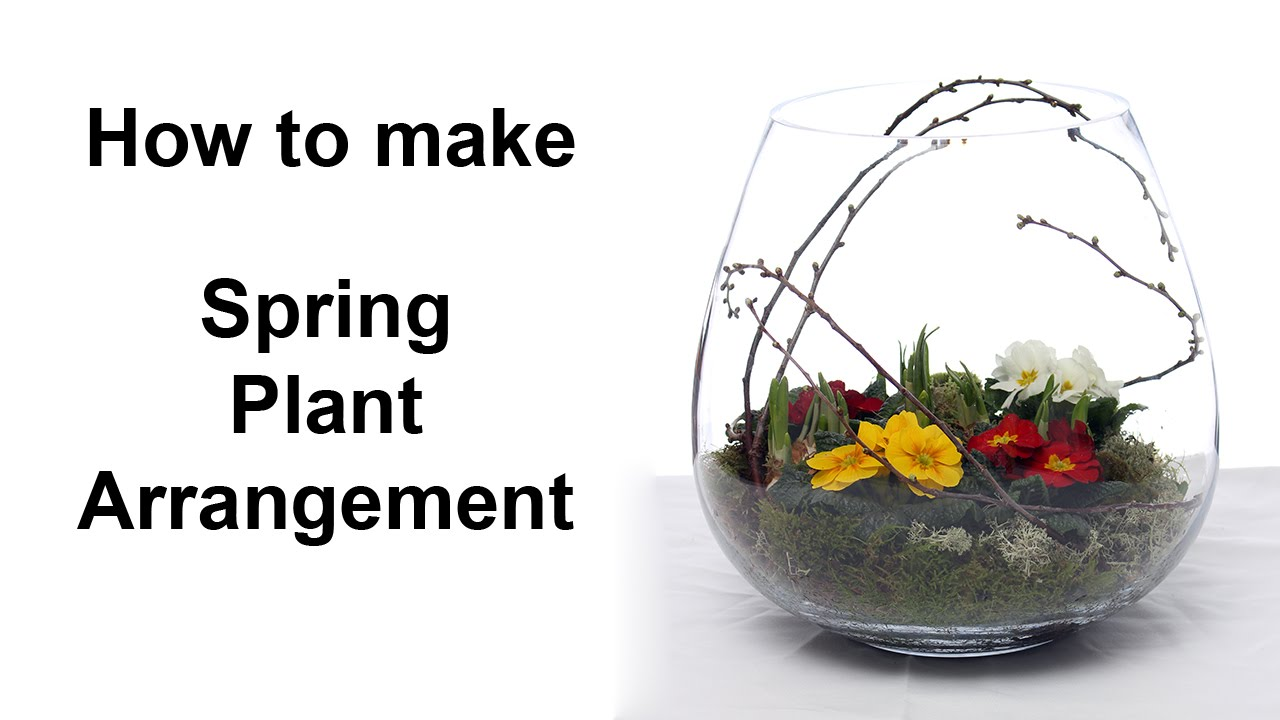 Spring Plant Arrangement Inside Clear Glass Container