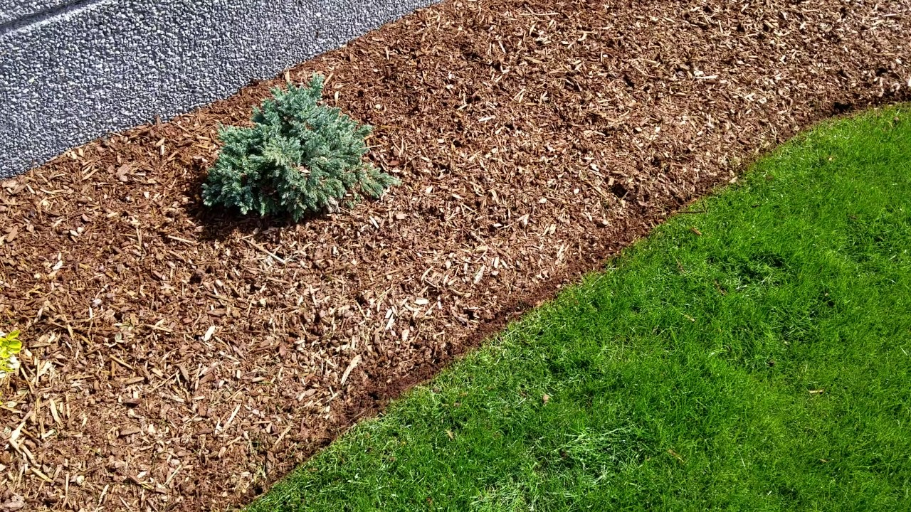 Grass Landscape Edging clean cut landscape how to properly edge a lawn using a edging clean cut landscape how to properly edge a lawn using a stihl string trimmer workwithnaturefo