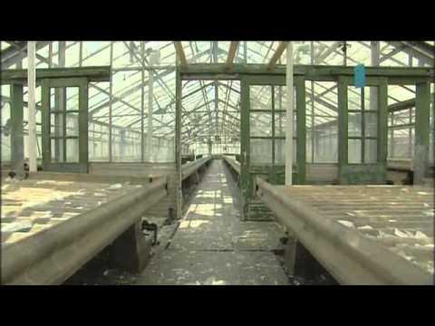 Chicago Park District Aug. 2011: Restore the Garfield Park Conservatory