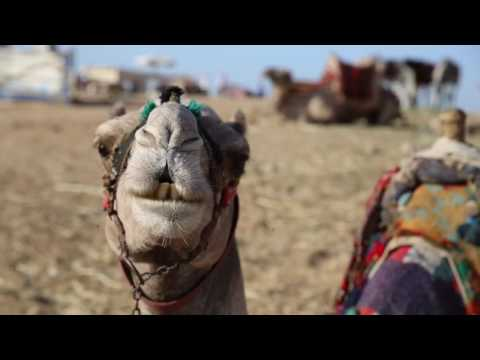 Magical Egypt vacation with Abercrombie & Kent