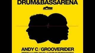 Drum and Bass Arena Disc 2: Champion Sound 16