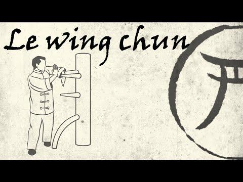 9eme kyu: le wing chun
