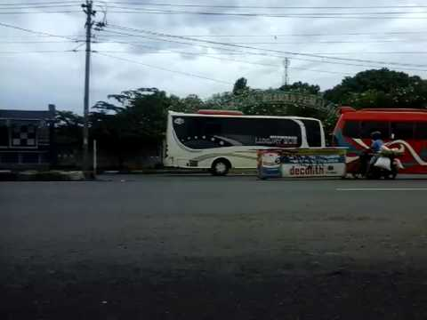 Bus Gajah Asri Raya Kalibening Youtube