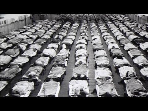 Chapter 1   Influenza 1918
