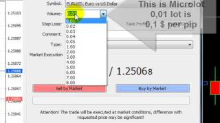 Introduction Meta trader 4 (MT4), defining LOT size and opening position