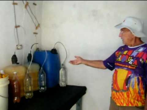 Como fazer vinho em casa youtube for Como criar peces ornamentales en casa
