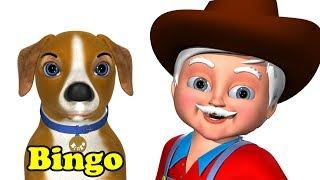 Bingo Nursery Rhyme - 3D Animation Rhymes & Bingo Dog Songs for Children