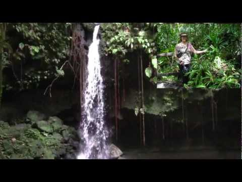 Dominica Emerald Pool Caribbean