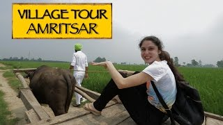 GottaDo || Village Tour  || Amritsar(When your in Amritsar. Make sure you head to a punjabi village and experience the local village life like we did. NEW UPLOAD EVERY TUESDAY & FRIDAY., 2015-08-29T04:23:57.000Z)